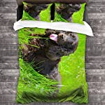 "Irish Water Spaniel 3 Pieces Kids Bed-in-a-Bag Bedding Set 86""x70"" (1 Full Comforter Cover + 2 Pillow Shams) 3"