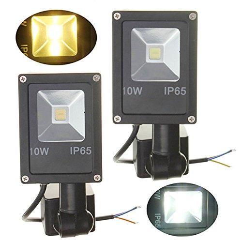 12V 10W PIR Motion Sensor LED Flood Light IP65 Warm/Cold White Light ( Pure white (Free Island Tiki Bar)