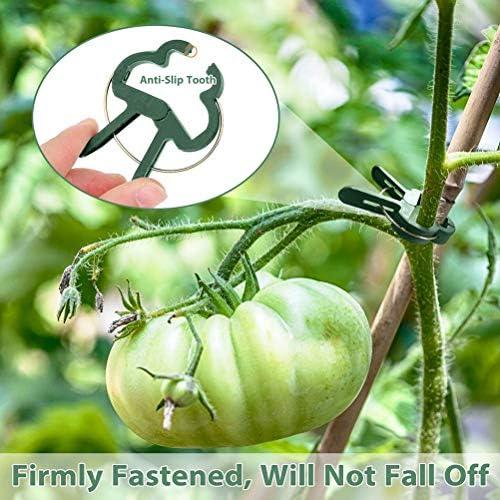20Pcs Wiederverwendbare Gartenpflanze Fest Clip Reben Trauben Unterstützung Fastener Gemüse Blumen Gebunden Buckle Clamp Gewächshaus Bracket
