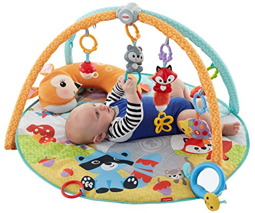 [Fisher-Price Moonlight Meadow Deluxe Play Gym] (Deluxe Baby Activity Gym)