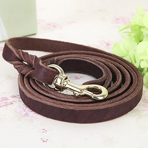 CHEDE - Best for Medium and Large Dogs - Heavy Duty Leather Dog Training Leash Dark Brown 6 Foot x 3/4 Inch Lead with Package Box