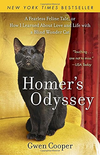 Image result for homer's odyssey cat