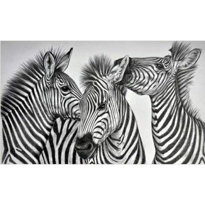 Decmart DIY 5D Diamond Painting Full Drill Zebras in Black and White Square Rhinestone Cross Stitch Painting Number Kit 12 x 16 inches
