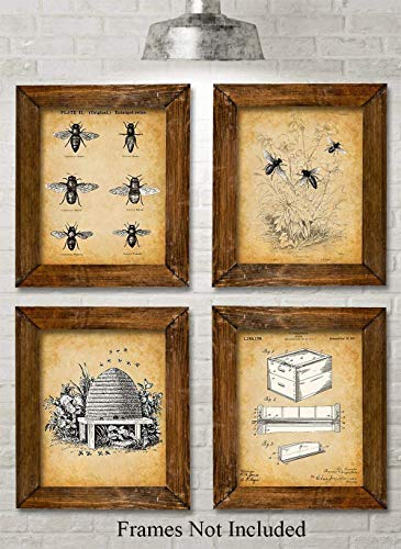 Honey Rectangular Rug - Original Bee Keeper Patent Prints - Set of Four Photos (8x10) Unframed - Makes a Great Gift Under $20 for Bee Keepers and Urban Gardeners