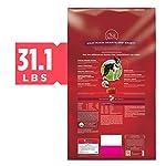 Purina ONE SmartBlend Natural Adult Dry Dog Food 9