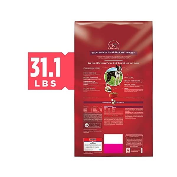 Purina ONE SmartBlend Natural Adult Dry Dog Food 2
