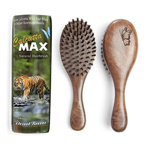 100% Pure Wild Boar Bristle Hair Brush, Calcutta Max for Thick or Long Hair, Gentle, Extra Stiff Natural Bristles, Hand Finished Indian Rosewood Handle, Tufted in USA, by Desert Breeze - 100 Hair Brush Percent