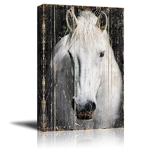 wall26 - Canvas Print Wall Art - Head of a White Horse on Rustic Style Wood Background - Gallery Wrap Modern Home Decor | Ready to Hang - 32x48 inches ()