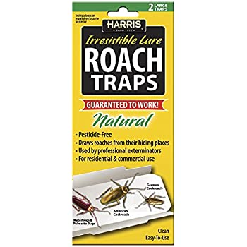 Amazon Com Harris Rtrp Roach Glue Traps W Lure 2 Pack