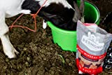 REDMOND Goat Mineral Supplement Mix, Unrefined Salt