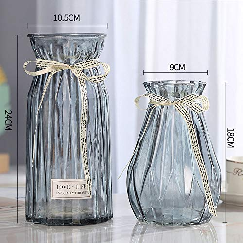(Candora 2 Pack Hand-Blown and Handmade Hemp Clear Glass Transparent Flower and Filler Vase for Home and Wedding Indoor and Outdoor Decoration (Grey,A#+C#))