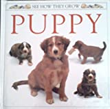 Puppy, Jane Burton, 0525673423