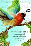 Why Birds Sing: A Journey Into the Mystery of Bird Song by David Rothenberg (2005-04-12)