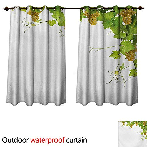 WilliamsDecor Vineyard Outdoor Ultraviolet Protective Curtains Collage of Wine Leaves on Bunch Farming Natural Rural Tasty Food Berry Image W72 x L63(183cm x 160cm) ()