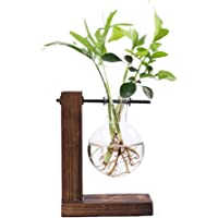 Hanbaili Simple creative glass bottle vase Hydroponic Vase Beautiful Wooden Glass Balcony Office Wooden Frame Water Culture Stand