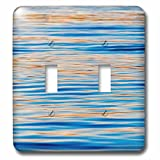 Danita Delimont - Abstract - Ripples of water, Banjarmasin, Kalimantan, Indonesia - Light Switch Covers - double toggle switch (lsp_225817_2)