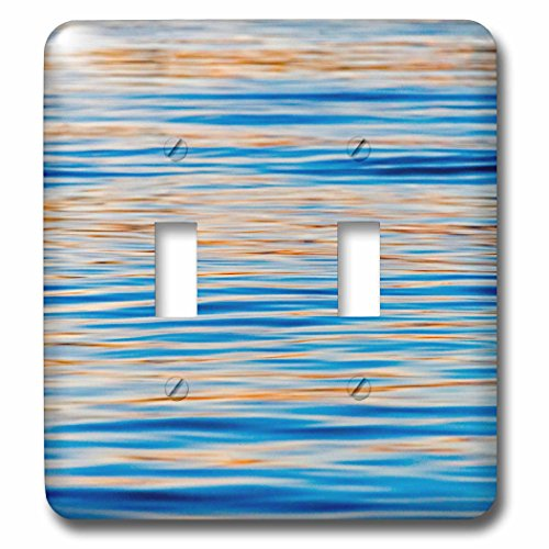 Danita Delimont - Abstract - Ripples of water, Banjarmasin, Kalimantan, Indonesia - Light Switch Covers - double toggle switch (lsp_225817_2) by 3dRose
