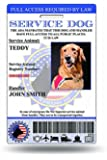 Holographic Service Dog ID Card (Custom) Includes Registration To National Dog Registry