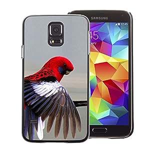 A-type Arte & diseño plástico duro Fundas Cover Cubre Hard Case Cover para Samsung Galaxy S5 (Red Parrot Grey Pastel Tropical Bird Feather)