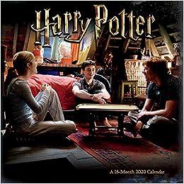 Harry Potter 2020 Mini Calendar: Trends International: 9781438868745