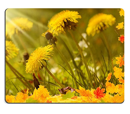 liili-mouse-pad-natural-rubber-mousepad-image-id-31922819-autumn-meadow