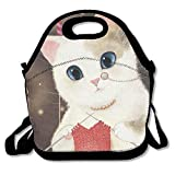 Unicorn Insulated Lunch Bag Lunch Tote Bag Travel School Picnic Lunch Box For Men & Women & Kids