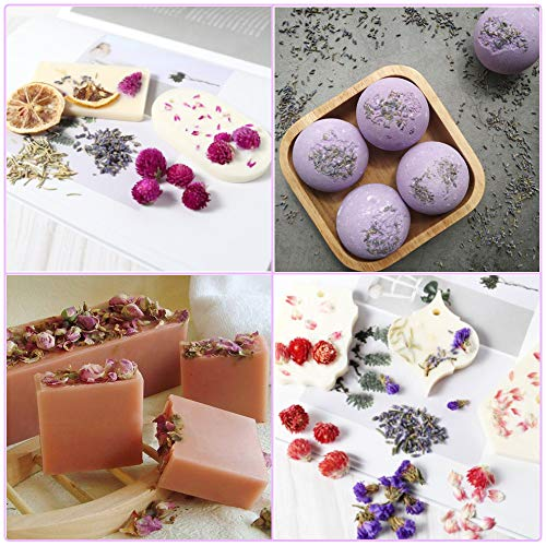 Dried Flowers, Natural Dried Flower Herbs for Candle Making, Resin Jewelry Soap Making – 9 Bag – Include Rosebud, Mint…