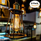 Edison Bulb 60W E26 Dimmable Antique Vintage Light Bulbs by DecorStar, Warm Amber Color, 6-Pack