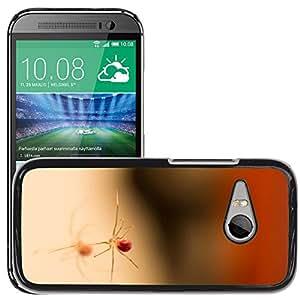 Print Motif Coque de protection Case Cover // M00125569 Araña Reflexión macro de insectos // HTC One Mini 2 / M8 MINI / (Not Fits M8)