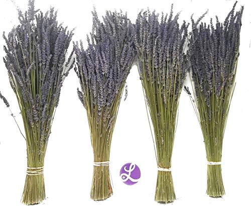 (Findlavender - Lavender Dried Premium Bundles - 18