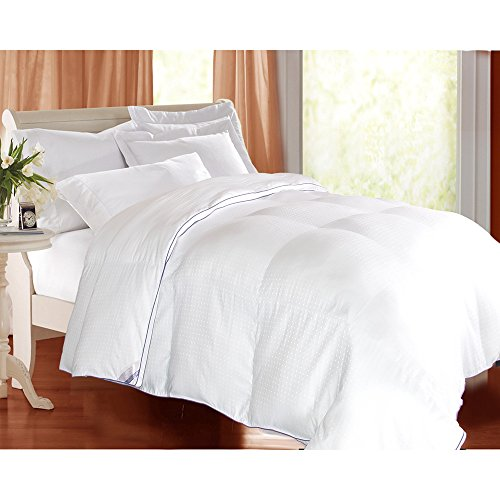 Kathy Ireland 1000 Thread Count Swiss Dot Down Alternative Comforter (Full/Queen) Sleep Mask & Comfortable Pair of Corded Earplugs Included Down Swiss Dot