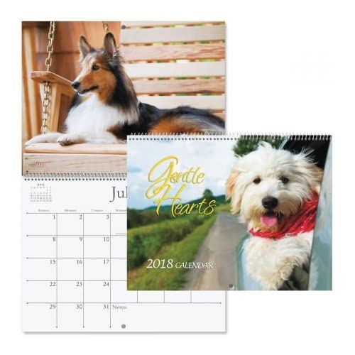 "Wholesale 2018 Dogs Wall Calendar - 12"" x 9"", bookstore quality, spiral bound free shipping"