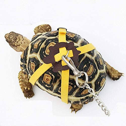 Pet Tortoise Turtle Leather Harness Strap Chest Collar Walking Lead Control Rope (S, Blue)