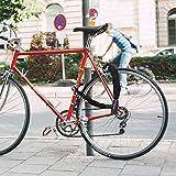 FUBOZONE Heavy Duty Bike Chain Locks, Bicycle