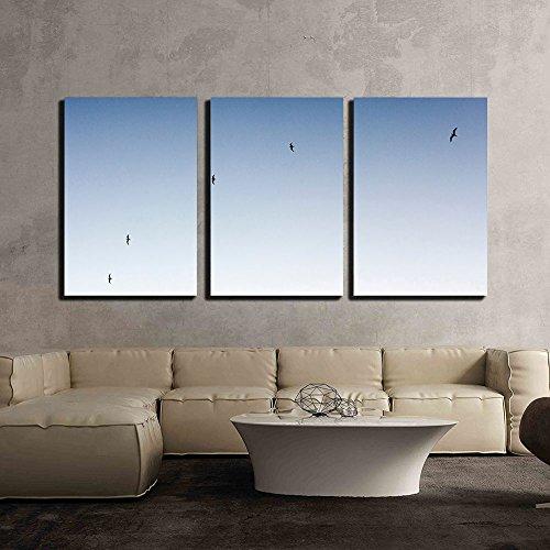 Birds Flying under Blue Sky x3 Panels