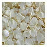 Cream Rose Petals. 60 cups Freeze-dried rose petals from Flyboy Naturals. Wedding Decorations