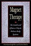 Magnet Therapy, Ghanshyam Singh Birla, 0892818417