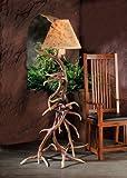 The Elk Antler Floor Lamp
