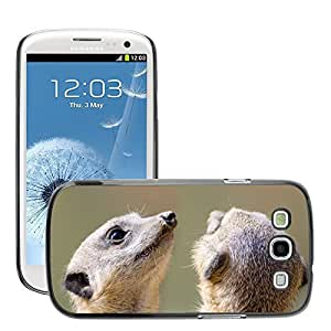 Super Stella Slim PC Hard Case Cover Skin Armor Shell Protection // M00149323 Meerkat Fur Small Face Mouth Animal // Samsung Galaxy S3 S III SIII i9300