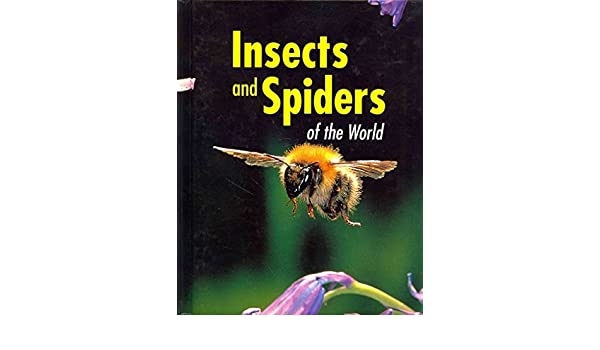 Insects And Spiders Of The World Scorpion Fly Stinkbug Marshall