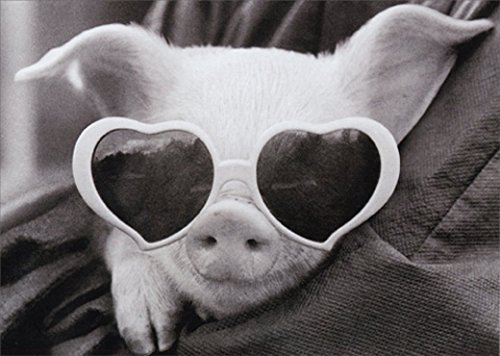 Pig Birthday Card - Pig Wearing Heart Sunglasses Cute Birthday Card