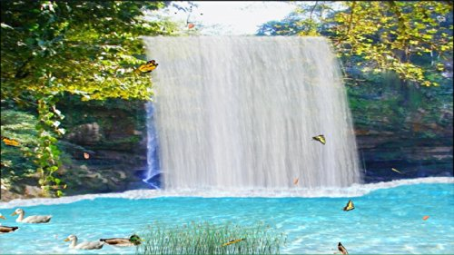 Mexico Waterfall [Download] by Waterfall Animation