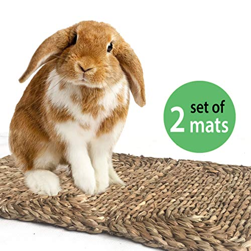(Grass Pet Mats for Bunny, Rabbit, Hamster, Guinea Pig, Chinchilla and Small Animals   Made Terra Set of 2 Woven Play Bedding and Chew Toys   Protect Paws from Plastic and Wire Cage )