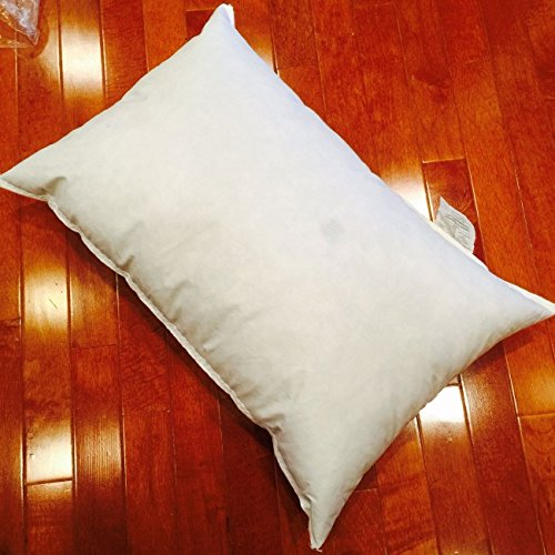 30'' x 40'' Eco-Friendly Pillow Form by Pillow Cubes