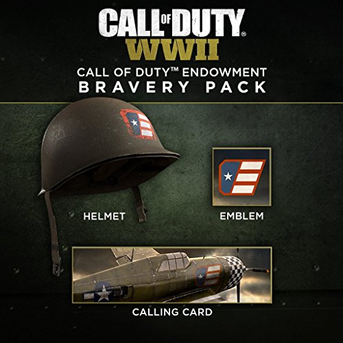 Call of Duty: WWII: Endowment Bravery Pack - PS4 [Digital Code]
