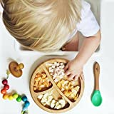 Avanchy Baby Toddler Feeding Suction Plate + Soft