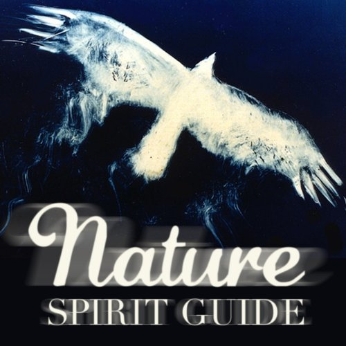 Nature Spirit Guide (Native Sounds Drums Healing & Peace)