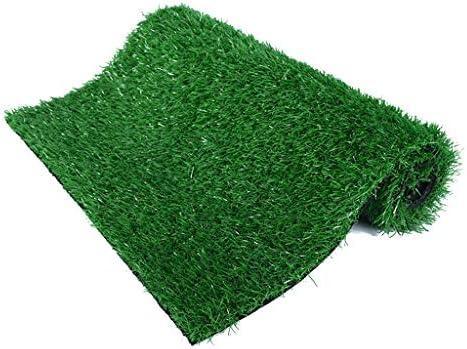 CarPET Kunstrasenteppich, 20 mm hoch, Strahlenschutz für Sommergrasverschlüsselung, grüne Innendekoration YNFNGXU (Size : 2mx3m)