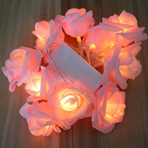 Flower Led Light Chain in Florida - 2