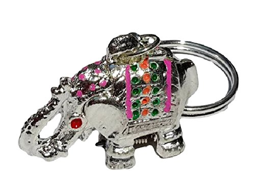 Super Lucky Elephant Keychain with Hidden Pill Box Charm Locket Silver Gold (Silver) (Boos Audio Car Amplifier)